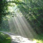 La Conscience et la Sophrologie