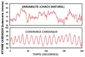 activite_cardiaque_courbes