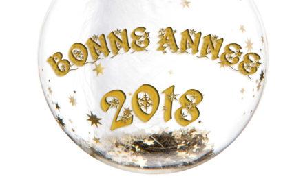 Bonne année 2018 : bonnes résolutions